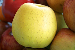 Golden_delicious_apple